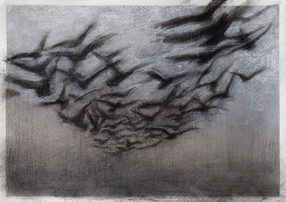 Birds before the storm (triptych)