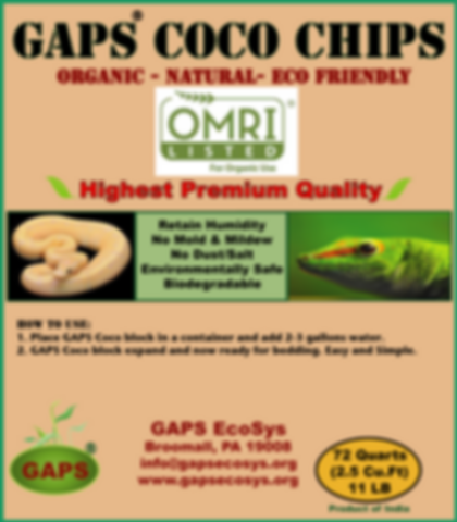 GAPS Coco Bedding-Chips (1).png