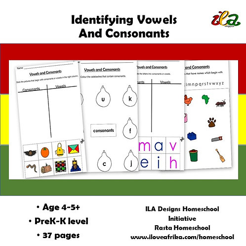 Identifying Vowels and Consonants Pack