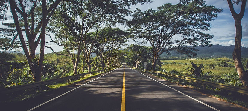 Straight road with trees on either side