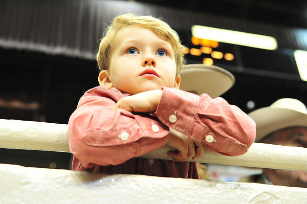 A young cowpoke transfixed by the Grand National Rodeo, annual Cow Palace tradition