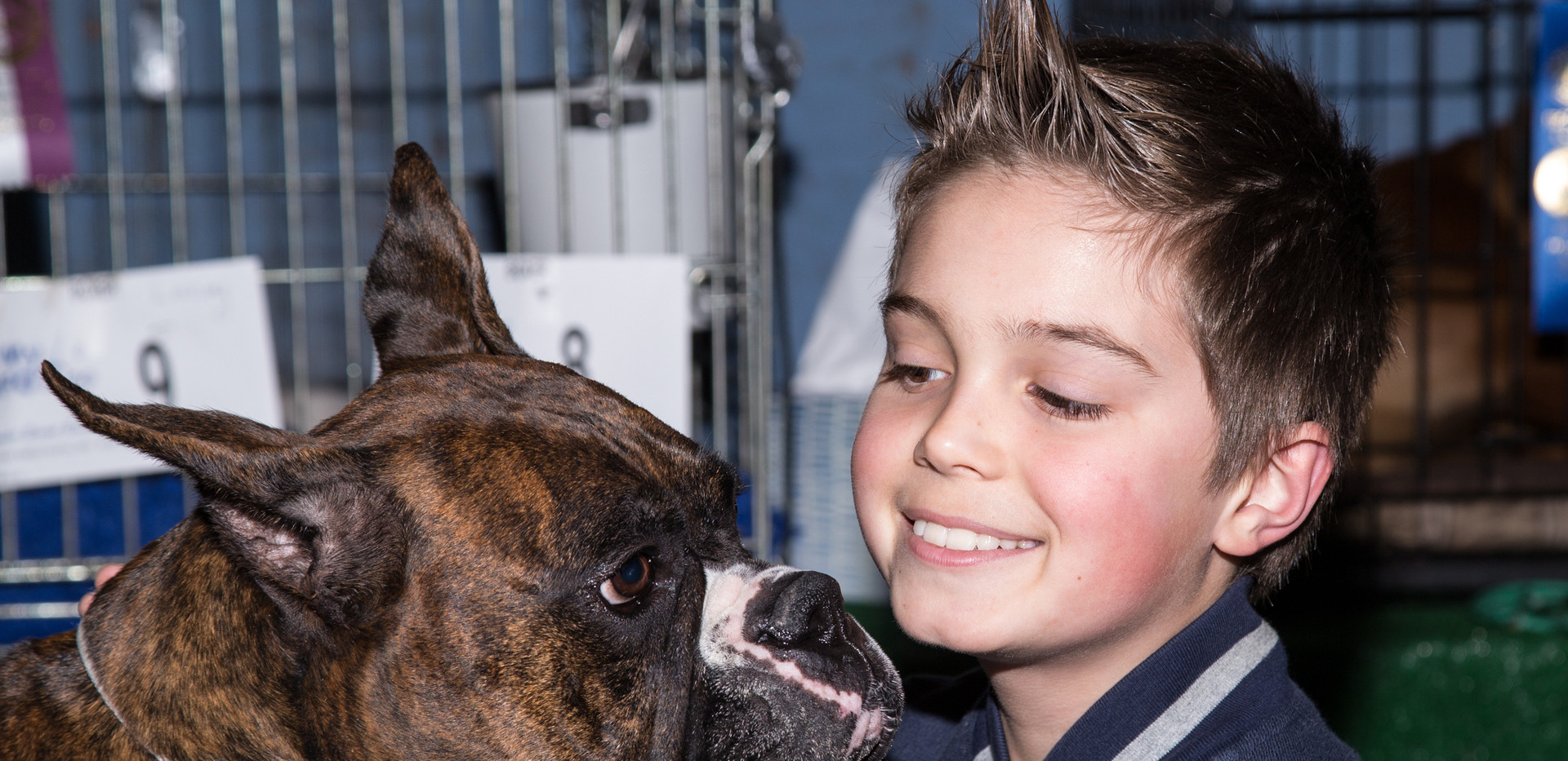 Photo Credit-Diane Costello(1) Dog Show
