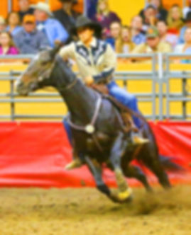 Cow Palace Grand National Rodeo.jpg
