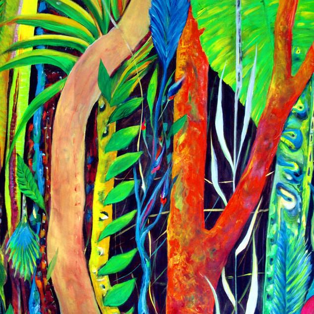 floresta Aotearoa