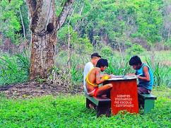 Projeto de Educação da UFMG, Ministério da Cultura, Diocese de Roraima e ISA
