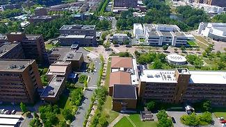 Hiroshima University Study Abroad