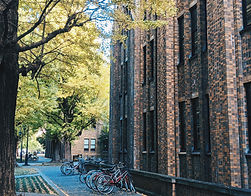 UTokyo University-wide Student Exchange Program