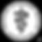 avma-logo-png-transparent.png