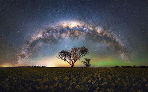 Field-of-Stars.jpg
