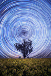 Young-Star-Trails.jpg