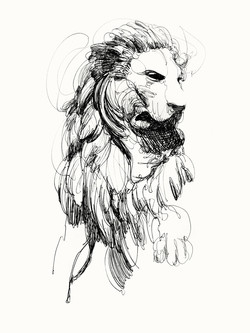 25 LIBRARY LION