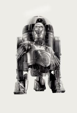 R2-D3PO