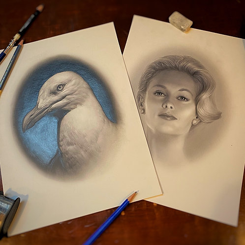 """HIM & HER 3: """"Canus. & Melody"""" from THE BIRDS  original graphite drawings"""