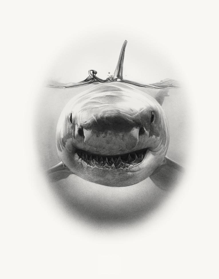 JAWS HER final.jpg