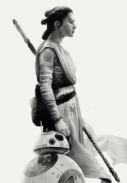 Rey profile