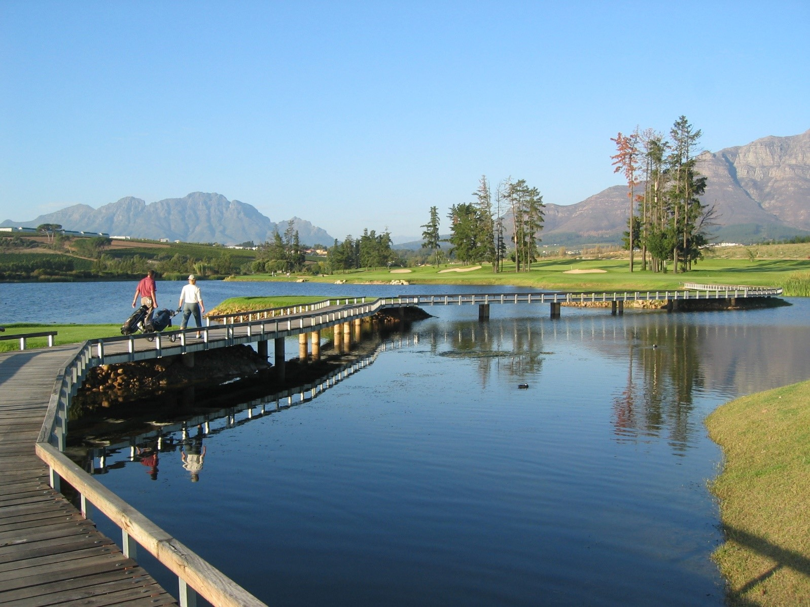 De Zalze golf course in the Cape Winelands of Stellenbosch South Africa - enjoy golf with Luxury Win