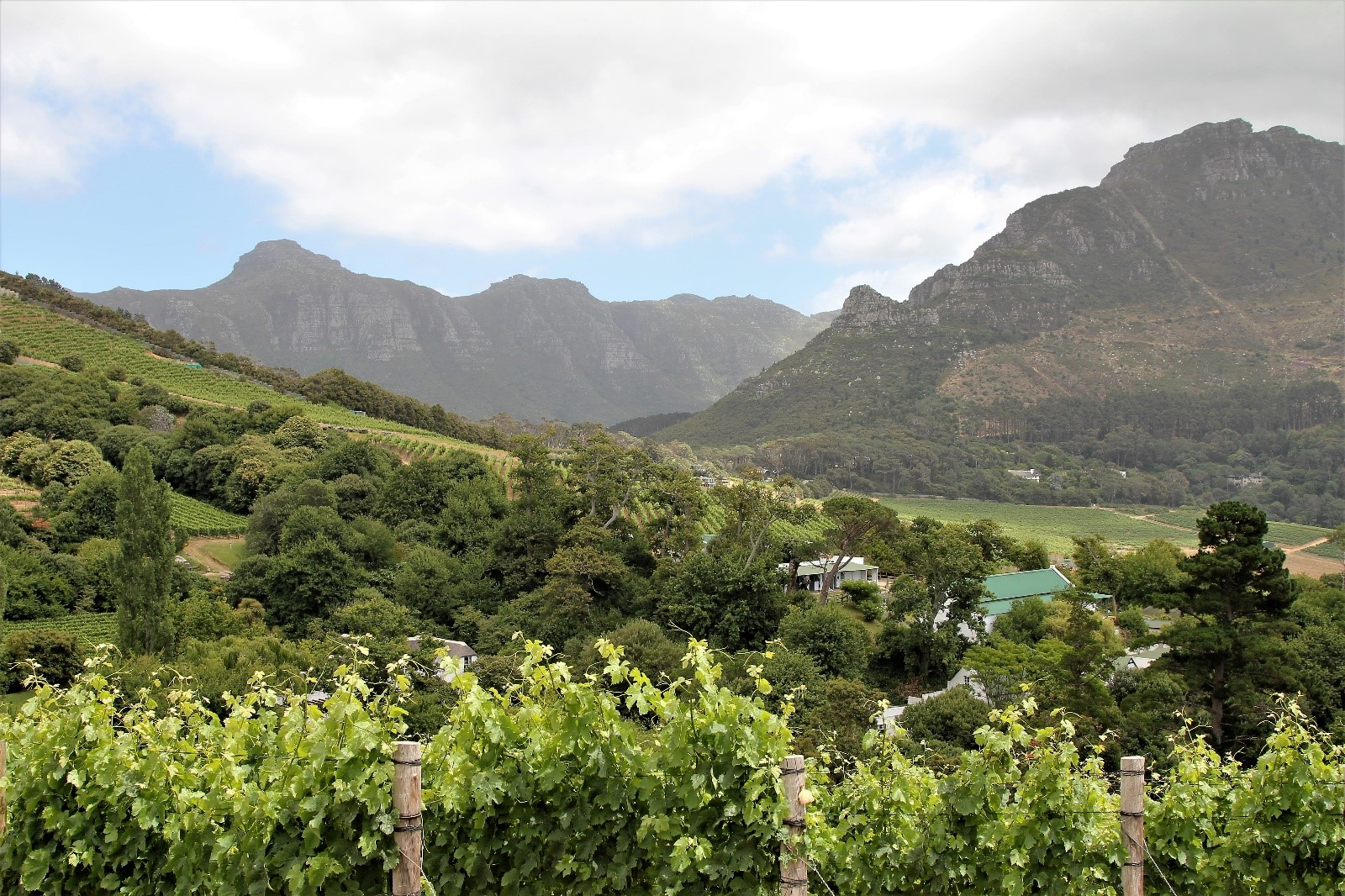 Views of Constantia Valley taken at Eagles Nest Winefarm in the Cape Winelands of South Africa on to