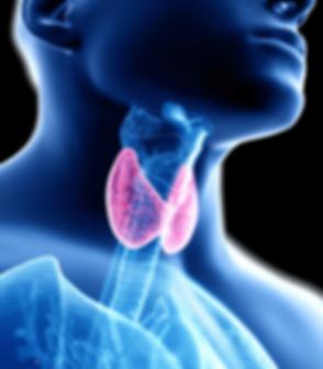 thyroid-balance.png