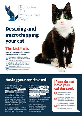 Desexing and microchipping factsheet - TassieCat