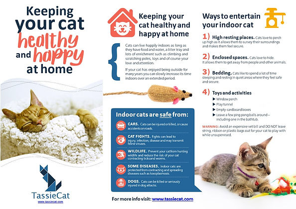 Keeping your cat healthy and happy at home brochure - TassieCat