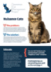 5435 sheet 4 - Nuisance Cats - FRONT.jpg