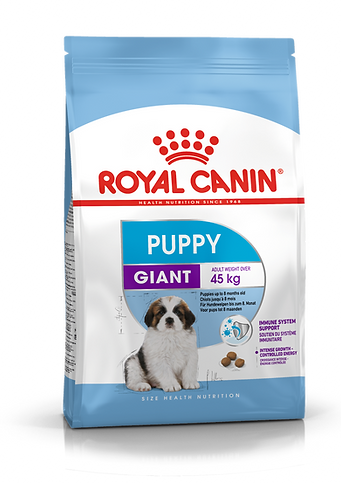 PACKSHOT-PUPPY_GIANT_SHN17_Low_Res.___We