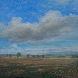 Fields at Lowick, Northumberland