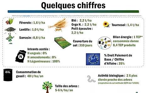 document résumant en quelques chiffres les rendements agricoles de la ferme de Pierre Pujos, blé 22 quintaux à l'hectare, tournesol 14 quintaux à l'hectare