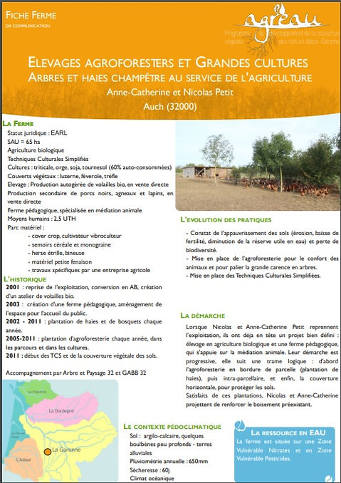 Image représentant la fiche de présentation PDF de la Ferme en Coton de Nicolas et Anne-Catherine Petit comportant des informations comme la SAU, l'emplacement ou les ressources de la ferme et redirigeant vers le pdf du réseau Agreau