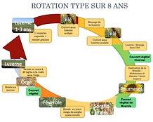 image représentant une rotation de culture type sur 8 ans de Pierre Pujos et faisant le lien vers un PDF du réseau Agreau