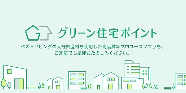 グリーン住宅ポイントトップ.jpg