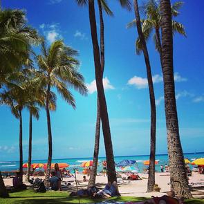 Hot tropic: Hawaii's islands