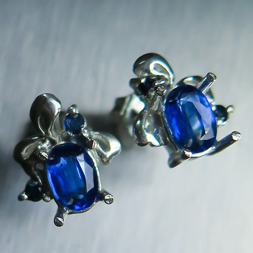1.55cts Natural Blue Kyanite Silver/ Gold/Platinum studs earrin