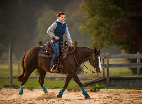 Catch a Ride, Catch a Rider: Catch-Rider is a New Job Site Just for Equestrians