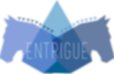 Entrigue Consulting marketing consultancy