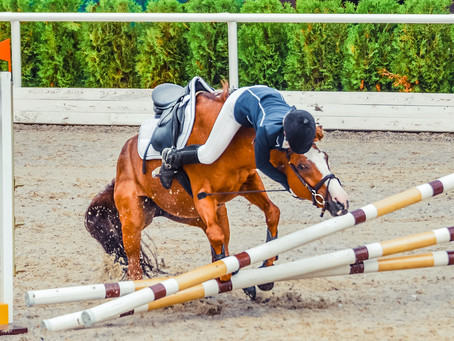 Insurance For The Equine Professional