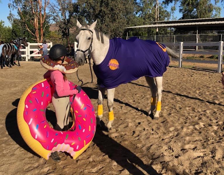 Halloween Horse Costumes, Halloween, Dunkin Donuts, Horse Costume