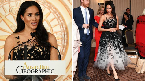 The internet falls in love with Meghan Markle's tulle Oscar de la Renta gown
