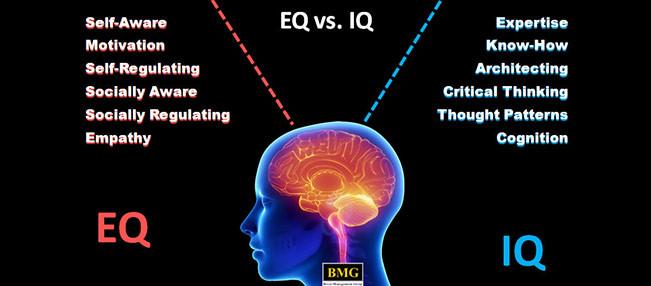 EQ vs IQ?