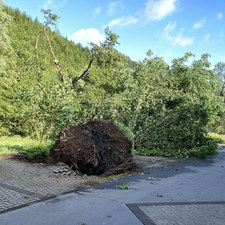 Tornado in Sundern am 20.06.2021