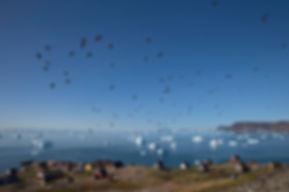 The small settlement Savissivik, Thule, Greenland.
