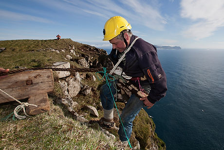 Fulmar egg harvesting at Skuvoy, Faroe Islands