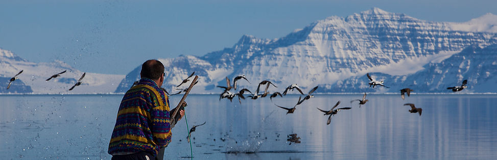 Eider hunting in Greenland
