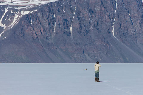Seal hunting, Thule, Greenland.
