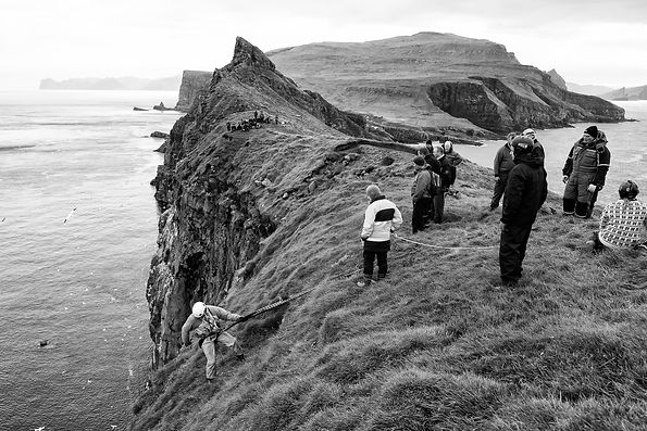 Traditional puffin hunting, Grimsey, Iceland.