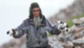 Little Auk (Dovekie) hunting, Savissivik, Greenland