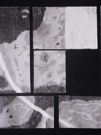'Central park', 50x60cm, 2012., polyptic