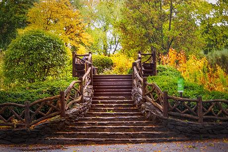 steps in the fall.jpg