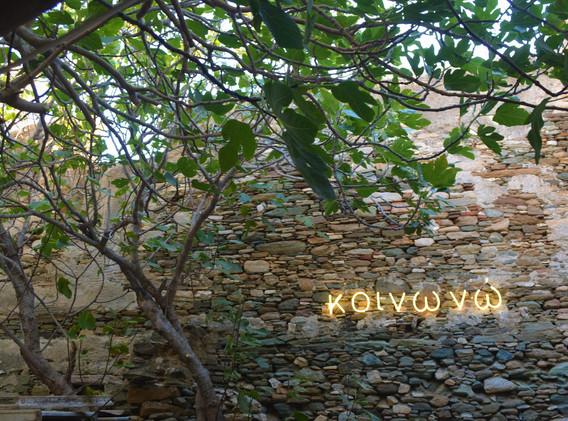ΚΟΙΝΩΝΩ, Sykia Garden