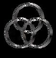 logo1-300.png